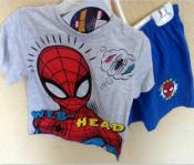 Ensemble Spider-man hello disney