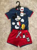 Ensemble mickey hello disney